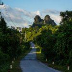 Straße im Nationalpark