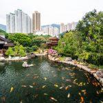 Nam Lian Garden, ein Idyll inmitten der Hochhäuser