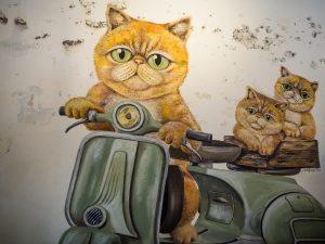 Wilde Katzenbande