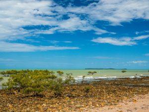Irgendwo an der Küste Australiens