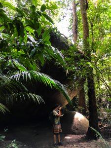 Findlinge im Daintree Rainforest