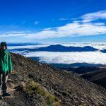Abstieg beim Tongariro Treck