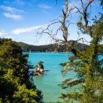 Kleine Inseln im Abel Tasman Nationalpark