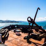 Boot im Hafen Wellingtons