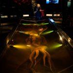 Riesen Tintenfisch im Te Papa Museum