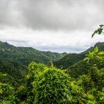 Ausblick von Rarotongas Hügeln